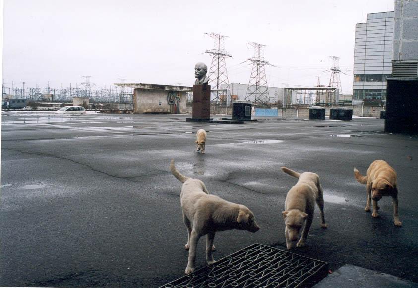 Chernobyl, station