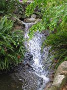 Descano Gardens17