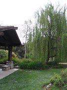 Descano Gardens23
