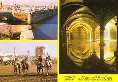 Morocco - Festival du Cheval NF