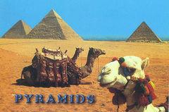 Egypt - Giza Pyramids