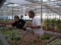Belgie. Abdel Cactus and Antonieta,