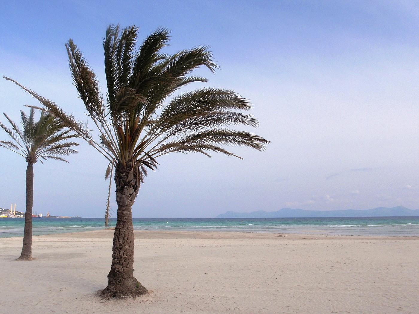 Playa Alcúdia