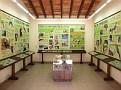 Naturschutzorganisation BVCF