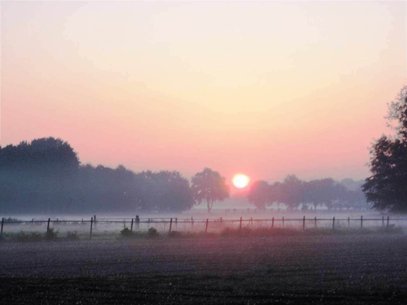 Limburger Sonnenaufgang