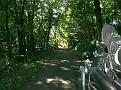 Schattiger Radlweg