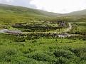 Sheep-shearing place