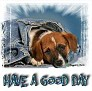 1Have a Good Day-blujeanpup-MC