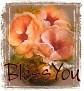 1BlessYou-peachfloral-MC