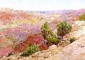 Grand Canyon [1924]