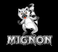 Mignon - RaccoonStepOnName