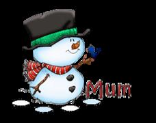 Mum - Snowman&Bird