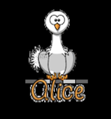 Alice - OstrichWithBlinkie