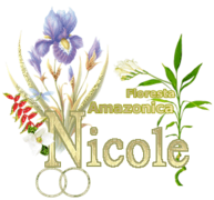 Nicole - Alpha Floresta Amazonica By Mitsu dena