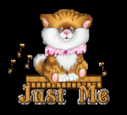 Just Me - CuteKittenSitting