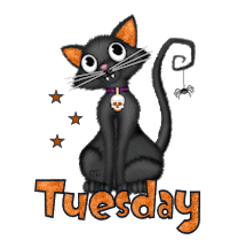 DOTW Tuesday - HalloweenKittySitting