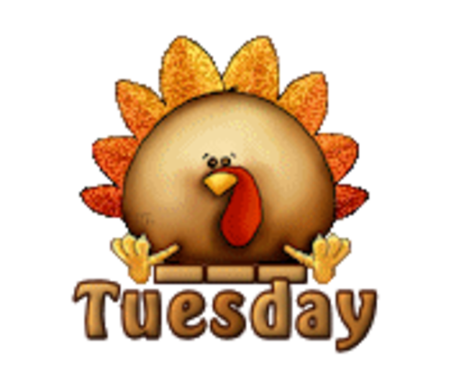 DOTW Tuesday - ThanksgivingCuteTurkey