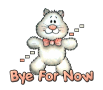 Bye For Now - HuggingKitten NL16