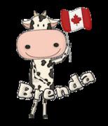 Brenda - CanadaDayCow