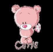 Carys - ShyTeddy