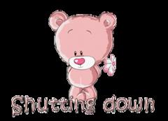 Shutting down - ShyTeddy