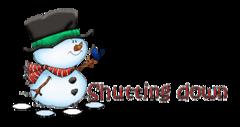 Shutting down - Snowman&Bird