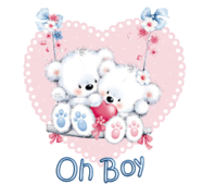 Oh Boy - ValentineBearsCouple2016