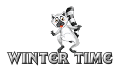 Winter Time - RaccoonStepOnName