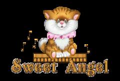 Sweet Angel - CuteKittenSitting