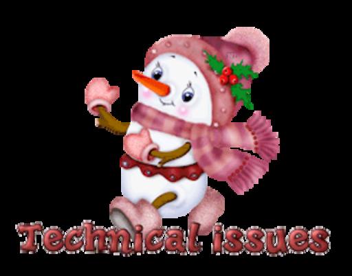 Technical issues - CuteSnowman