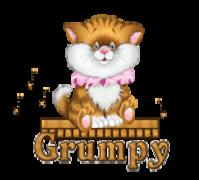 Grumpy - CuteKittenSitting