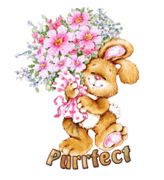Purrfect - BunnyWithFlowers