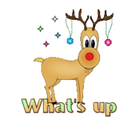 What's up - ChristmasReindeer