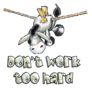 Don't work too hard - DunkeyOnline