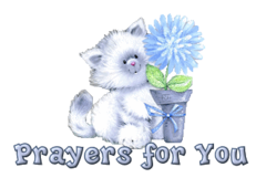 Prayers for You - CuteKitten