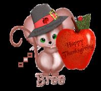 Bree - ThanksgivingMouse