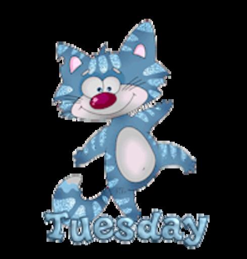 DOTW Tuesday - DancingCat