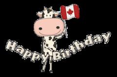 Happy Birthday - CanadaDayCow