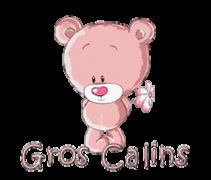 Gros Calins - ShyTeddy