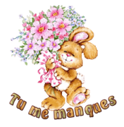 Tu me manques - BunnyWithFlowers