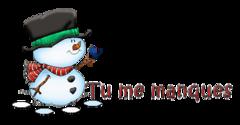 Tu me manques - Snowman&Bird
