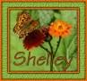 Shelley - Butterfly1