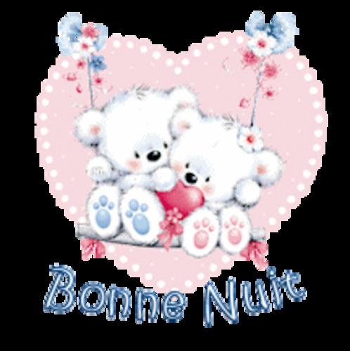 Bonne Nuit - ValentineBearsCouple