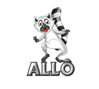 Allo RaccoonStepOnName