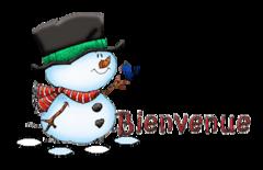 Bienvenue - Snowman&Bird