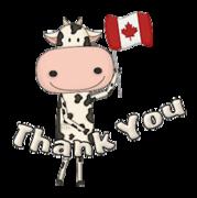 Thank You - CanadaDayCow