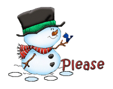 Please - Snowman&Bird