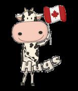 Hugs - CanadaDayCow
