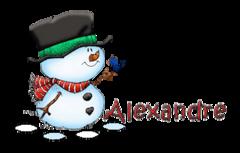 Alexandre - Snowman&Bird