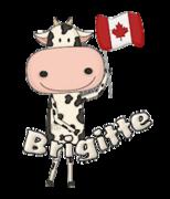 Brigitte - CanadaDayCow